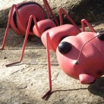large-ant-model-sito